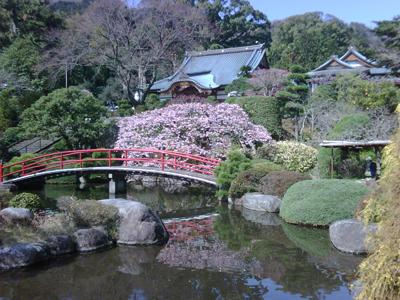 お庭がキレイな松月院